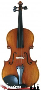 14 - violin