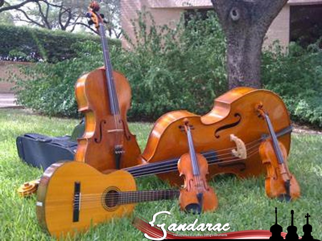 Double bass, cello, viola, violin, and guitar on grass